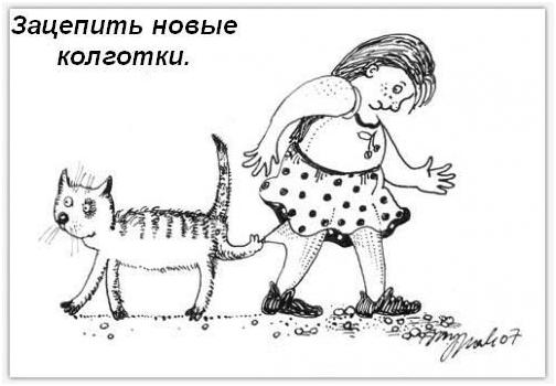 Кошкины обязанности в доме tweet кошкины